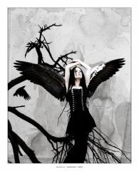 Obrazki Anioły Mroczne