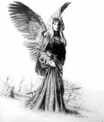 Obrazki Szkice Aniołów