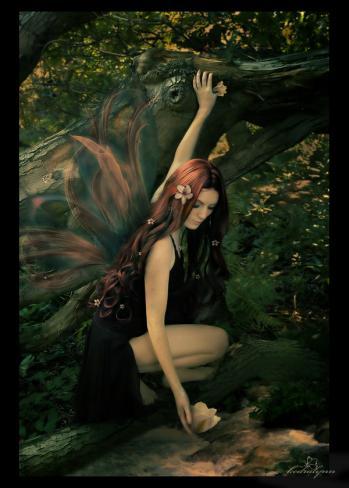 Leśna motylowa wróżka